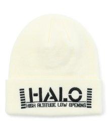 AVIREX/ニットキャップ HALO/KNIT CAP/502654782