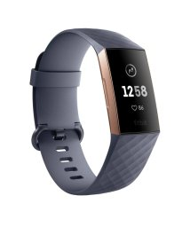 HIROB Ladys/Fitbit Charge3 FB410RGGY/502676063