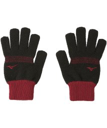 MIZUNO/ミズノ/ブレスサーモ手袋(鹿の子のびのび)/502676406