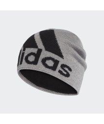 adidas/アディダス/ビッグロゴクライマウォームビーニー/502676443