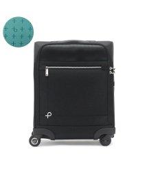 PROTeCA/プロテカ スーツケース PROTeCA 機内持ち込み マックスパスソフト2 MAXPASS SOFT Sサイズ 23L エース ACE 12834/502718820