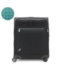 PROTeCA/プロテカ スーツケース PROTeCA 機内持ち込み マックスパスソフト2 MAXPASS SOFT Sサイズ 42L エース ACE 12835/502718821
