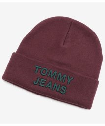 TOMMY JEANS/ロゴニットキャップ/502718713