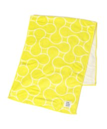 SHIPS KIDS/THE PARK SHOP:PLAY BALL FACE TOWEL/502777639