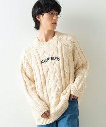 WEGO/WEGO/ロービングヤーンケーブルセーター/502610250