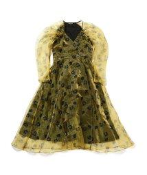Ray BEAMS/sister jane / Maxi Wrap Dress/502748157
