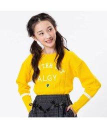 ALGY/袖ラインニット_ウォッシャブル/502532840