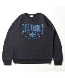Columbia/コロンビア/メンズ/ハートマウンテングラフィッククルー/502812265