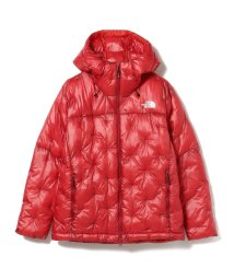 Ray BEAMS/THE NORTH FACE / Polaris Insulated Hoodie/502788706