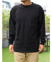 Goodwear/【Goodwear】USAコットン袖リブBIGポケットロンT/502828715