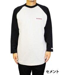 Goodwear/【Goodwear】USAコットン9分袖ロゴ刺繍ラグランT/502828718