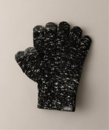 JOURNAL STANDARD relume Men's/AGREEMENT×JOURNAL STANDARD relume  5GG SLUB GLOVE/502832728