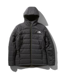 THE NORTH FACE/ノースフェイス/メンズ/REVERSIBLE ANYTIME INSULATED HOODIE/502846466
