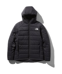 THE NORTH FACE/ノースフェイス/メンズ/REVERSIBLE ANYTIME INSULATED HOODIE/502846467