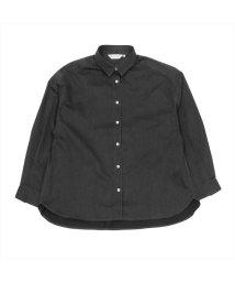 BRICKHOUSE/ウィメンズシャツ 長袖 レギュラー衿 デニムライク グレー×無地調/502848376