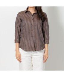 BRICKHOUSE/レディース ウィメンズシャツ 七分袖 形態安定 Wガーゼシャツ レギュラー衿 綿100% ブラウン×ライトブラウンストライプ/502849455