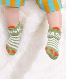 WASK/BABY恐竜カップソックス/502816240