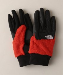 JOURNAL STANDARD/【THE NORTH FACE / ザ ノースフェイス】 DENALI ETIP GLOVE/502881983