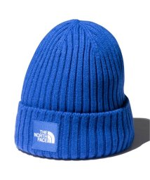 JOURNAL STANDARD relume Men's/【THE NORTH FACE / ノースフェイス】 CAPPUCHO LID/502888426