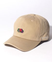 FRUIT OF THE LOOM/FTL LOGO EMB LOW CAP/502884958