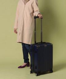 russet/Trolley Bag トロリー スーツケース(TK-118)/502890639
