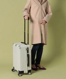 russet/Trolley Bag【WEB限定】(TK-118-WEB)/502890642