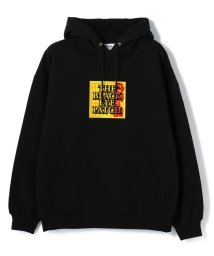 LHP/BlackEyePatch/ブラックアイパッチ/AS ADVERTISED  LABEL HOODIE/502908191