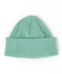 BEAUTY&YOUTH UNITED ARROWS/【別注】 <Racal> L/RIB KNIT CAP/ニットキャップ/501932035