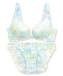 fran de lingerie/Lacy Gradation レーシーグラデーション ブラ&ショーツセット B65-G80カップ/502922958