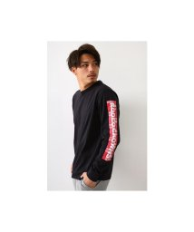 RODEO CROWNS WIDE BOWL/ペイズリーBOX L/S Tシャツ/502925480