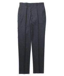 ADAM ET ROPE'/【Scye Clothing for WILD LIFE TAILOR】ノータックトラウザーズ/502931951