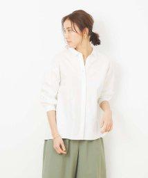 collex/リトルカラーシャツ/502935254