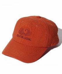 FRUIT OF THE LOOM/ONIBEGIE LOW CAP/502922884