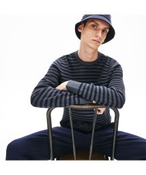 LACOSTE Mens/ストライプピケセーター/502935325