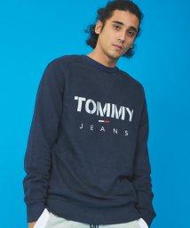 TOMMY JEANS/メランジスウェットプルオーバー/502927242