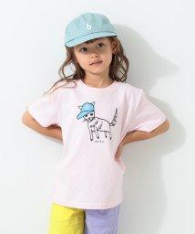 こどもビームス/Chari&Co. / cat 半袖 Tシャツ 20(100~150cm)/502938473
