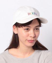 Dickies/Rainbow EMB Low Cap/502933073