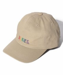 Dickies/Rainbow EMB Low Cap/502933073