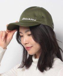 Dickies/CLASSIC TWILL LOW CAP/502933109