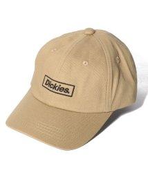 Dickies/KID'S BOX LOGO CAP/502933118