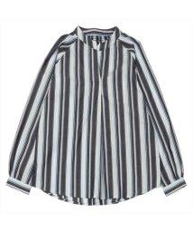 BRICKHOUSE/長袖カジュアルシャツ 衿ぐりシャーリングチュニック 白×ブルー系ストライプ/502953048