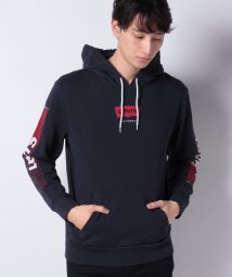 LEVI'S MEN/GRAPHIC PO HOODIE T3 HM ALT PO NIGHT SKY/502909121