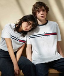 TOMMY HILFIGER MENS/トミーヒルフィガー ロゴ Tシャツ / TINO TEE/502946424