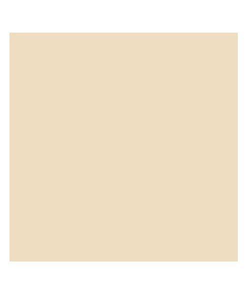 バックヤードファミリー 東レ トレシーカラークロス 30cm×30cm ユニセックス ベージュ 30×30cm 【BACKYARD FAMILY】