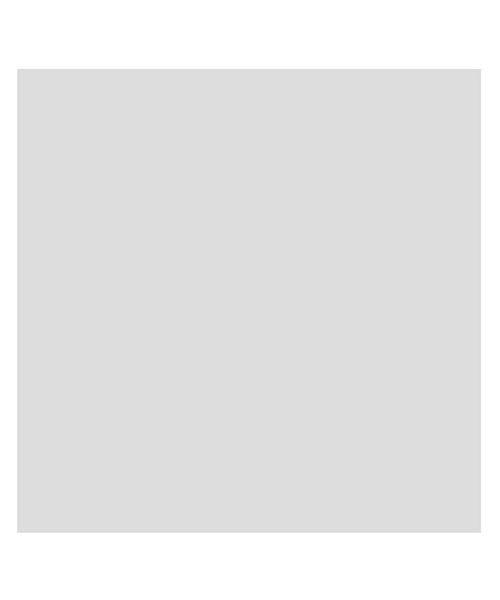 バックヤードファミリー 東レ トレシーカラークロス 30cm×30cm ユニセックス グレー 30×30cm 【BACKYARD FAMILY】