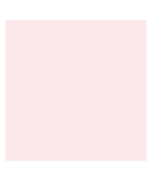 バックヤードファミリー 東レ トレシーカラークロス 30cm×30cm ユニセックス ピンク系1 30×30cm 【BACKYARD FAMILY】