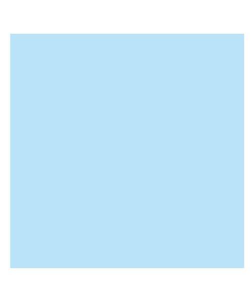 バックヤードファミリー 東レ トレシーカラークロス 30cm×30cm ユニセックス ライトブルー 30×30cm 【BACKYARD FAMILY】