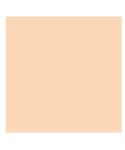 バックヤードファミリー 東レ トレシーカラークロス 30cm×30cm ユニセックス ピンク 30×30cm 【BACKYARD FAMILY】