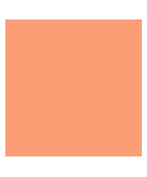 バックヤードファミリー 東レ トレシーカラークロス 30cm×30cm ユニセックス オレンジ 30×30cm 【BACKYARD FAMILY】