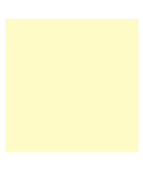 バックヤードファミリー 東レ トレシーカラークロス 30cm×30cm ユニセックス ライトイエロー 30×30cm 【BACKYARD FAMILY】